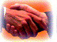 steun St. GRONDVEST op giro 2446600